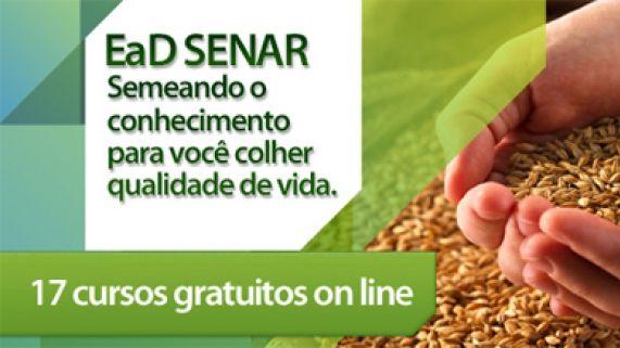 cursos online grátis no ead do Senar