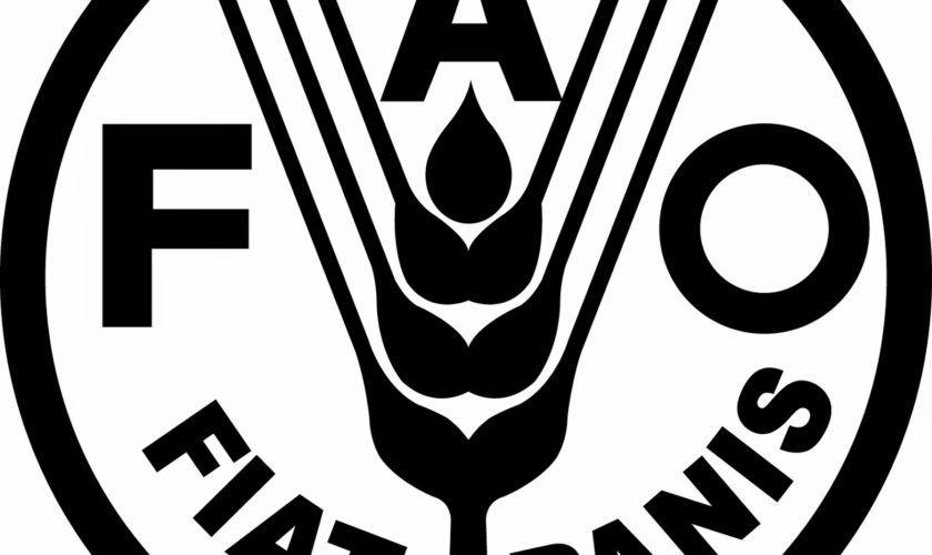 FAO está oferecendo curso gratuito online